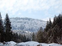 La neige a couvert des collines de montagne photographie stock libre de droits