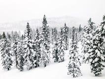 La neige a couvert des montagnes Images stock