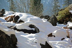 La neige a couvert des roches des chaînes de montagne de l'Himalaya Photos libres de droits