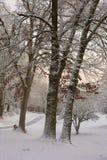 La neige a couvert l'allée Images stock