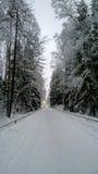 La neige a couvert l'allée dans un jour de froid d'hiver images libres de droits