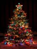 La neige a couvert l'arbre de Noël Photos stock