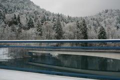 La neige a couvert la forêt d'arbres de pin Photos libres de droits