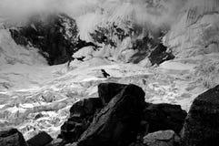 La neige a couvert la montagne images libres de droits
