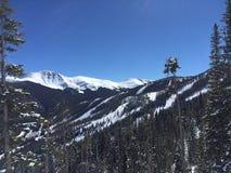 La neige a couvert la montagne de griffe d'ours Images stock