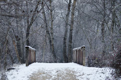 La neige a couvert la passerelle profondément dans la forêt photos stock