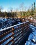 La neige a couvert la rampe dans la forêt Photos stock