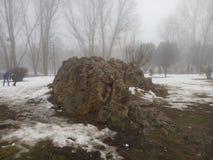 La neige a couvert la roche Photo libre de droits