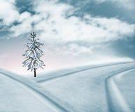 La neige a couvert la route Images stock