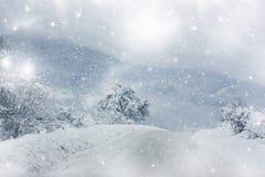 La neige a couvert la route d'hiver Image stock