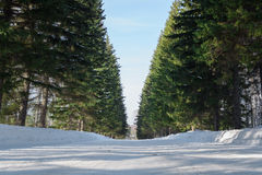La neige a couvert la route dans le paysage d'hiver Photo stock