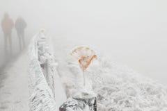 La neige a couvert la route en montagnes de Nantou Hehuan, Taïwan Image libre de droits