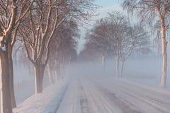 La neige a couvert la route par l'avenue brumeuse d'arbres glacials Images stock