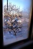 La neige a couvert la vue de fenêtre de rue Photographie stock