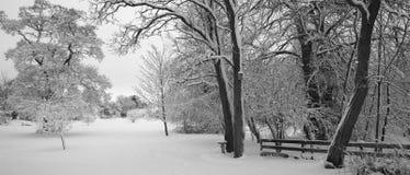 La neige a couvert la zone Photos stock