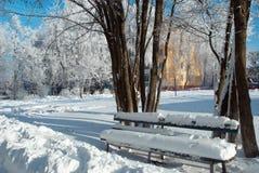 La neige a couvert le banc près des arbres Photographie stock libre de droits