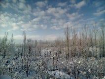 La neige a couvert le Cachemire Photographie stock libre de droits