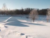 La neige a couvert le champ et la forêt Photo stock