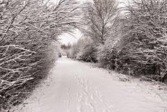 La neige a couvert le chemin Photographie stock libre de droits