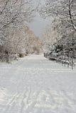 La neige a couvert le chemin Images libres de droits