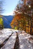 La neige a couvert le chemin Image stock