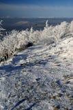 La neige a couvert le chemin Photos stock