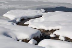 La neige a couvert le courant sur la montagne de Kolob en Utah du sud Photographie stock