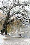 La neige a couvert le lac et le banc Image libre de droits