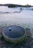 La neige a couvert le pâturage Images libres de droits