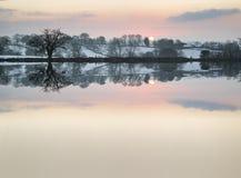 La neige a couvert le paysage de lever de soleil de campagne d'hiver reflété dans s Photo libre de droits