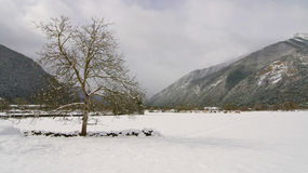 La neige a couvert le pré Photo stock