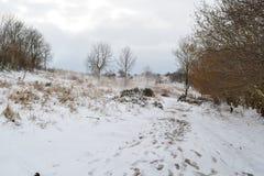 La neige a couvert le sentier piéton Image stock