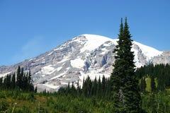 La neige a couvert le sommet du Mt. plus pluvieux Image libre de droits