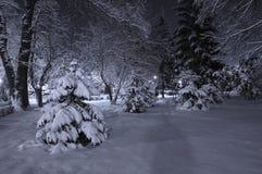 La neige a couvert le stationnement la nuit Image stock