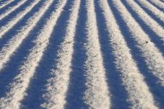La neige a couvert le toit Photographie stock