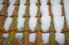 La neige a couvert le toit Photographie stock libre de droits