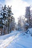 La neige a couvert la route dans la forêt d'hiver Photo stock