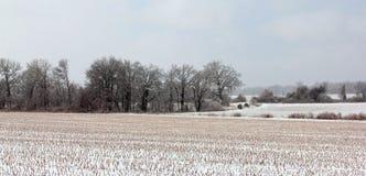 La neige a couvert Tennessee Plains Photo stock