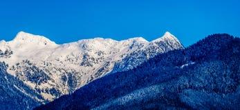La neige couverte fait une pointe les crêtes de tintement et d'autres crêtes de montagne des montagnes de côte en Colombie-Britan Images stock