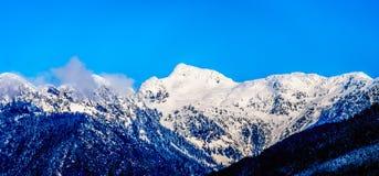 La neige couverte fait une pointe les crêtes de tintement et d'autres crêtes de montagne des montagnes de côte en Colombie-Britan Photos stock