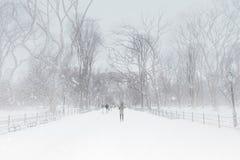 La neige d'hiver a couvert le mail de Central Park Photo stock
