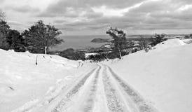 La neige dans des champs et sur un fond d'arbres de courrier pour des r?dacteurs textotent la copie photo libre de droits