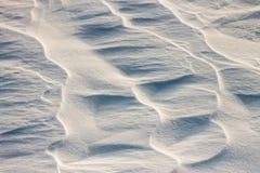 La neige de fond ondule au coucher du soleil par le vent Photo stock