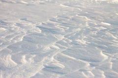 La neige de fond ondule au coucher du soleil par le vent Photographie stock