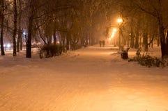 La neige de nuit d'hiver tombe en parc Image stock