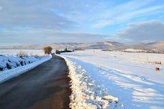 La neige de route a couvert le paysage Photo stock