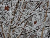 La neige de texture est tombée sur la rue blanche images stock