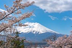 La neige en gros plan a couvert le mont Fuji Mt Fuji avec le fond bleu-foncé clair de ciel dans des fleurs de cerisier de Sakura image stock