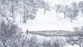 La neige images stock