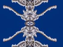 La neige et la glace sur les branches est magique Image libre de droits